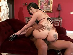 Curvy inked harlot Armani Staxxx missionary pounded by a black bloke